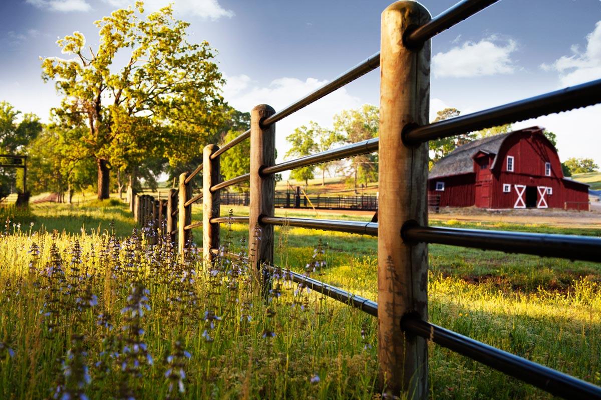 ponderosa-fence-022